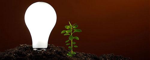 Ampoules conomie d 39 nergie obligatoires d s 2010 - Les lampes led sont elles dangereuses pour la sante ...