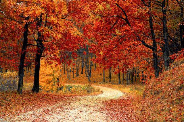 La luminothérapie pour le changement de saison