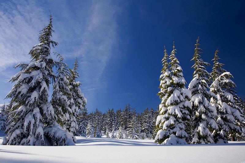 Dépression hiver