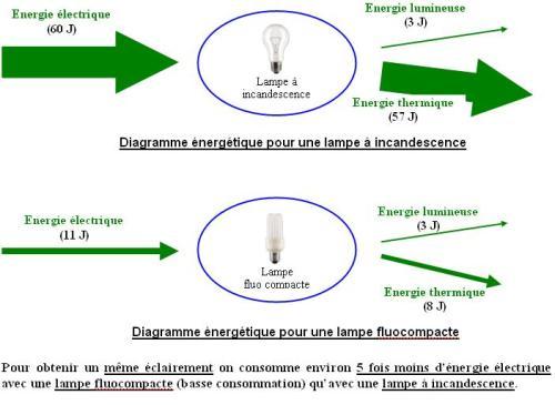 Schéma lampe basse consommation incandescence et fluocompacte