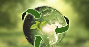 Recyclage des ampoules fluocompactes